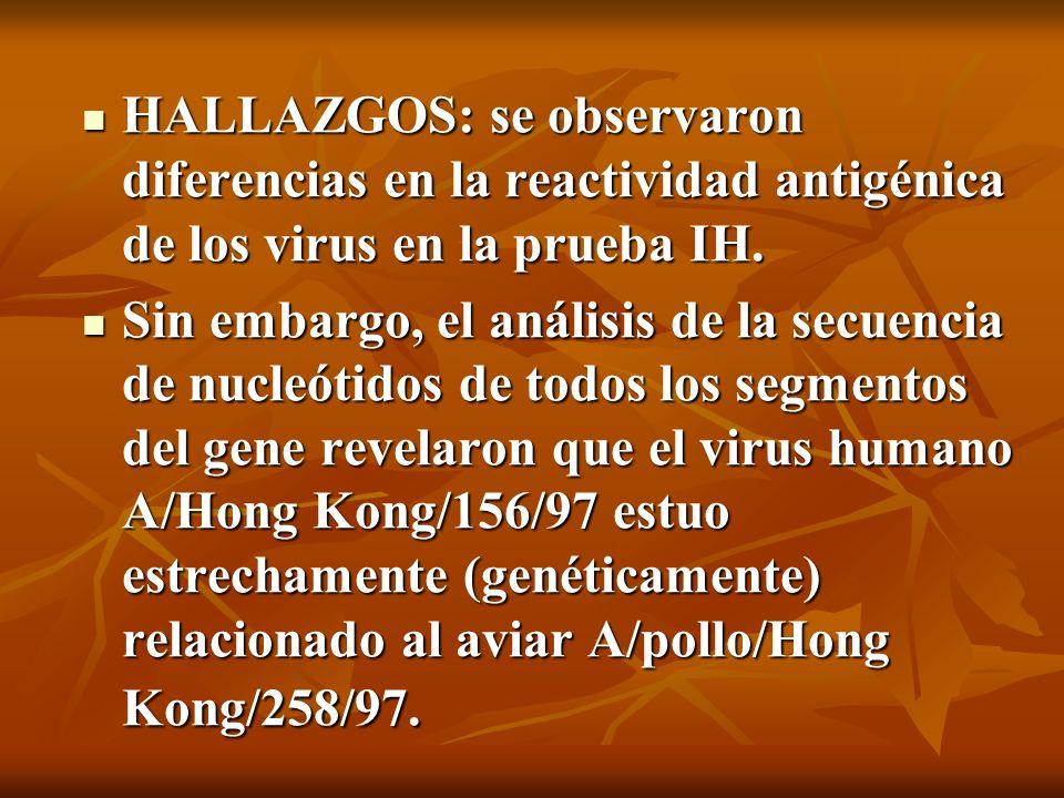 HALLAZGOS: se observaron diferencias en la reactividad antigénica de los virus en la prueba IH. HALLAZGOS: se observaron diferencias en la reactividad