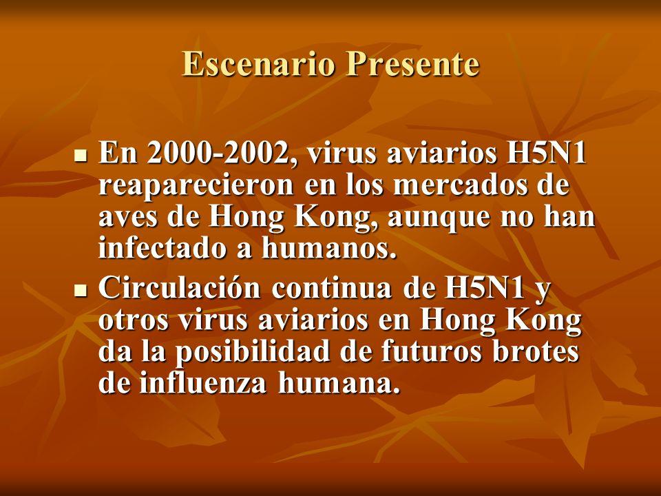 Escenario Presente En 2000-2002, virus aviarios H5N1 reaparecieron en los mercados de aves de Hong Kong, aunque no han infectado a humanos. En 2000-20