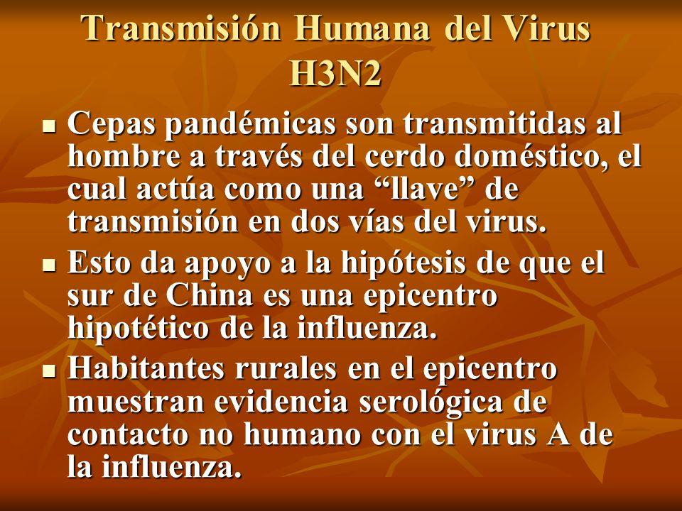 Transmisión Humana del Virus H3N2 Cepas pandémicas son transmitidas al hombre a través del cerdo doméstico, el cual actúa como una llave de transmisió