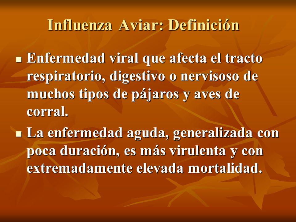 Influenza Aviar: Definición Enfermedad viral que afecta el tracto respiratorio, digestivo o nervisoso de muchos tipos de pájaros y aves de corral. Enf