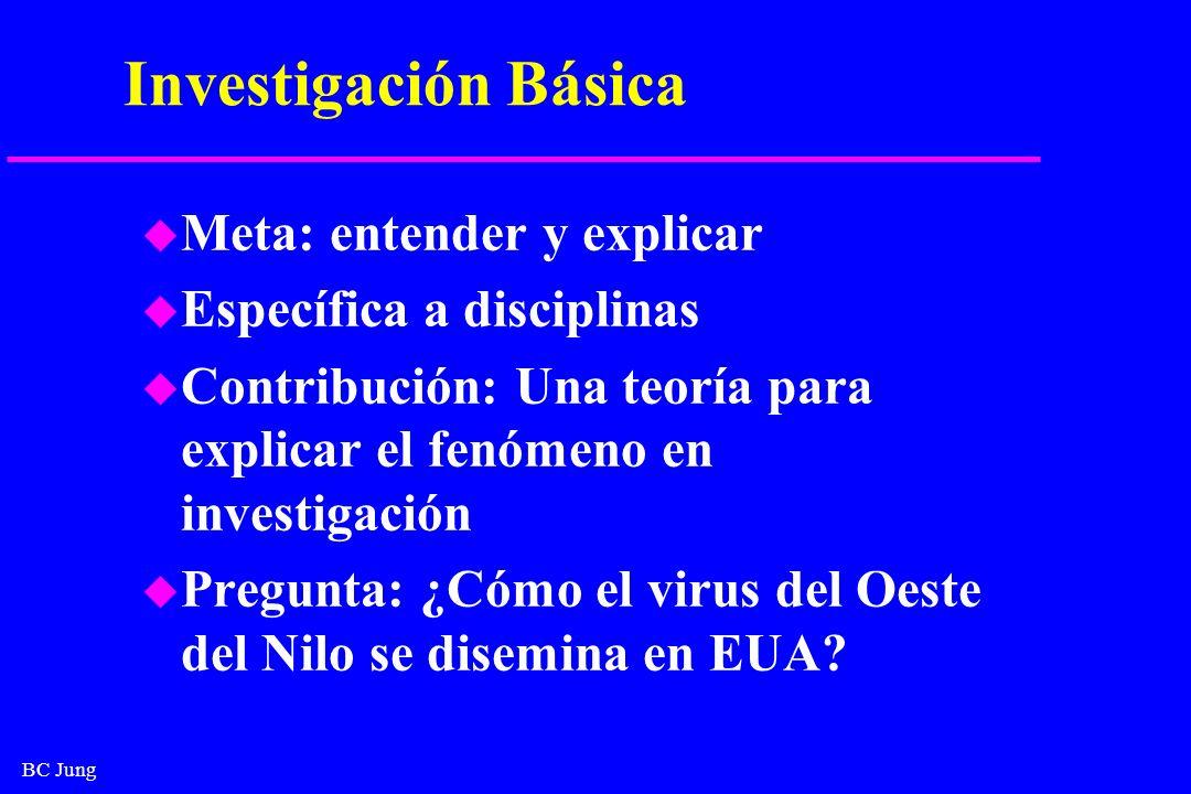 BC Jung Investigación Básica u Meta: entender y explicar u Específica a disciplinas u Contribución: Una teoría para explicar el fenómeno en investigac