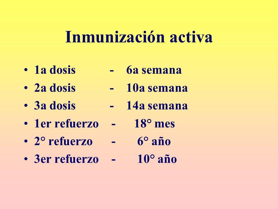 Inmunización activa 1a dosis - 6a semana 2a dosis - 10a semana 3a dosis - 14a semana 1er refuerzo - 18° mes 2° refuerzo - 6° año 3er refuerzo - 10° añ