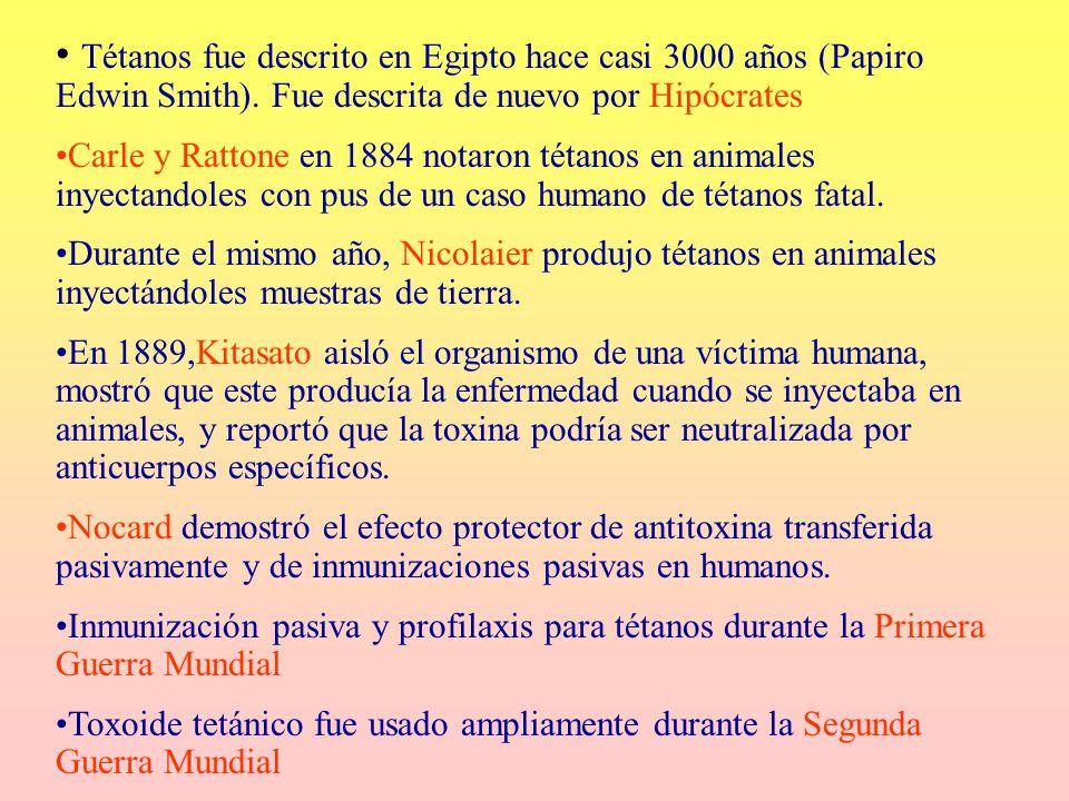 Tétanos fue descrito en Egipto hace casi 3000 años (Papiro Edwin Smith). Fue descrita de nuevo por Hipócrates Carle y Rattone en 1884 notaron tétanos