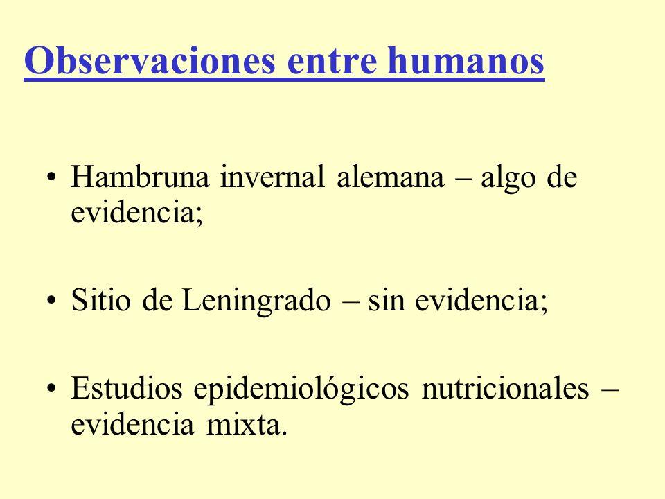 Observaciones entre humanos Hambruna invernal alemana – algo de evidencia; Sitio de Leningrado – sin evidencia; Estudios epidemiológicos nutricionales