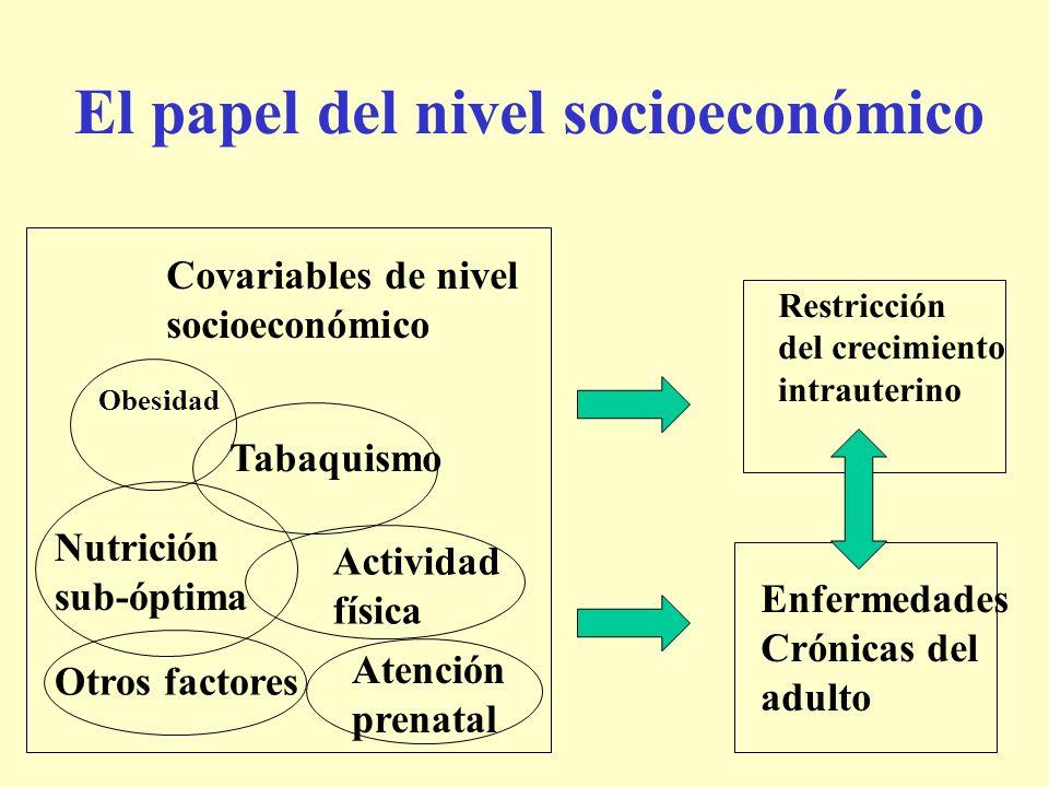 El papel del nivel socioeconómico Nutrición sub-óptima Tabaquismo Obesidad Actividad física Otros factores Covariables de nivel socioeconómico Enferme