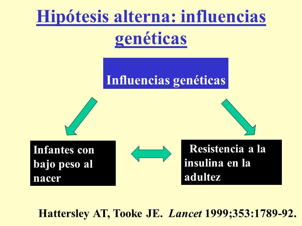 Infantes con bajo peso al nacer Resistencia a la insulina en la adultez Influencias genéticas Hipótesis alterna: influencias genéticas Hattersley AT,