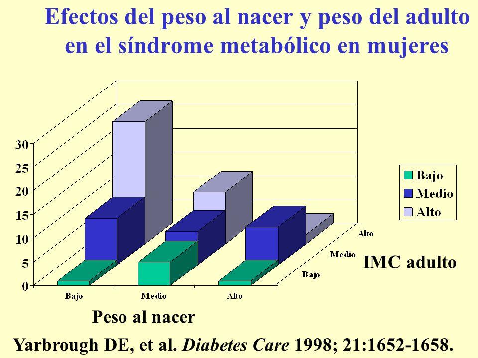 Efectos del peso al nacer y peso del adulto en el síndrome metabólico en mujeres Peso al nacer IMC adulto Yarbrough DE, et al. Diabetes Care 1998; 21: