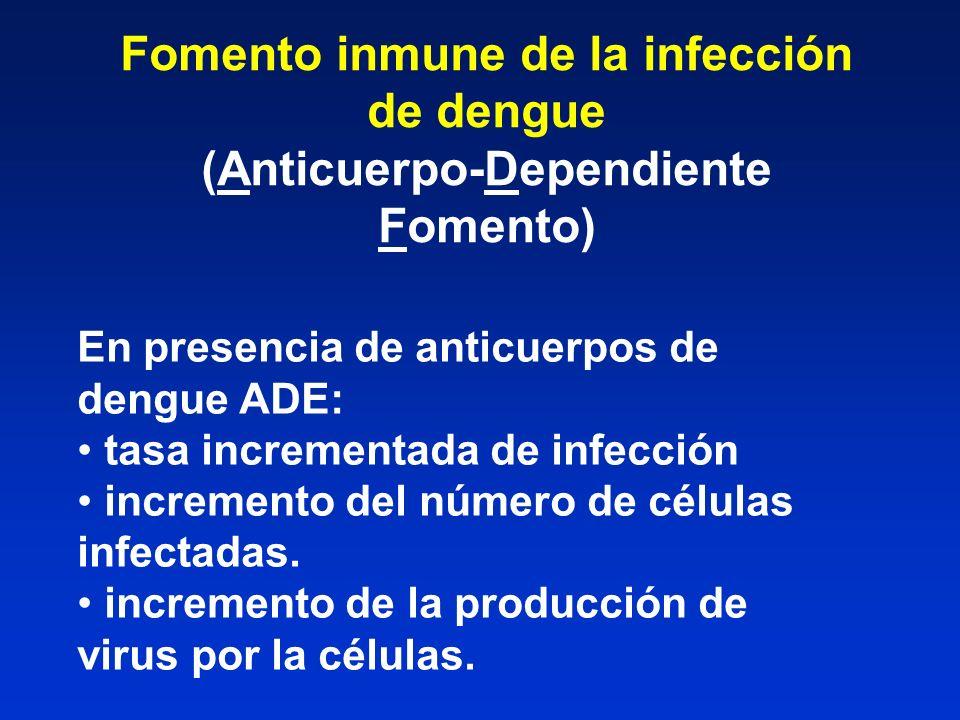 Fomento inmune de la infección de dengue (Anticuerpo-Dependiente Fomento) En presencia de anticuerpos de dengue ADE: tasa incrementada de infección in