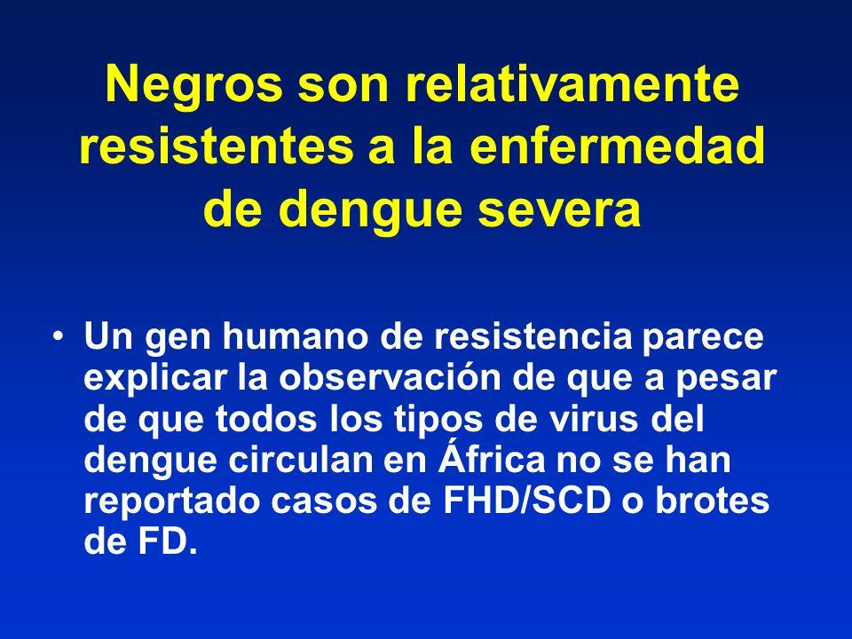 Negros son relativamente resistentes a la enfermedad de dengue severa Un gen humano de resistencia parece explicar la observación de que a pesar de qu