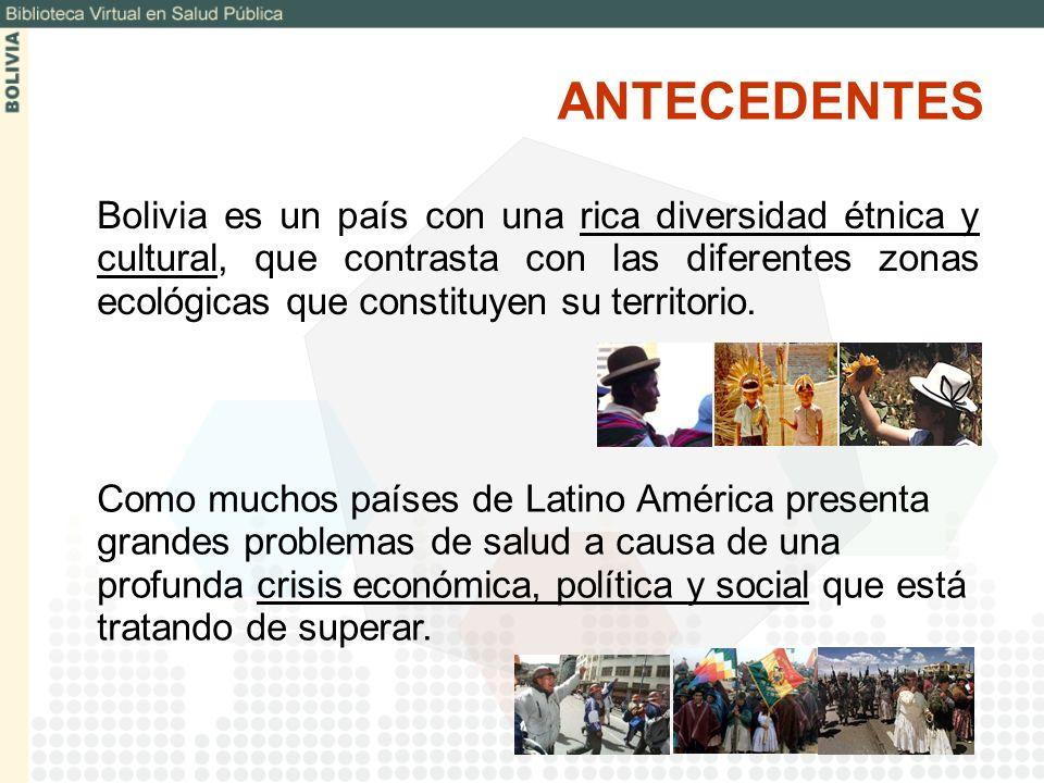 Utilización de servicios de HINARI, facilitando el acceso a información Desarrollo del modulo AIEPI en el marco de la Biblioteca Virtual de Pediatría Argentina – Bolivia.