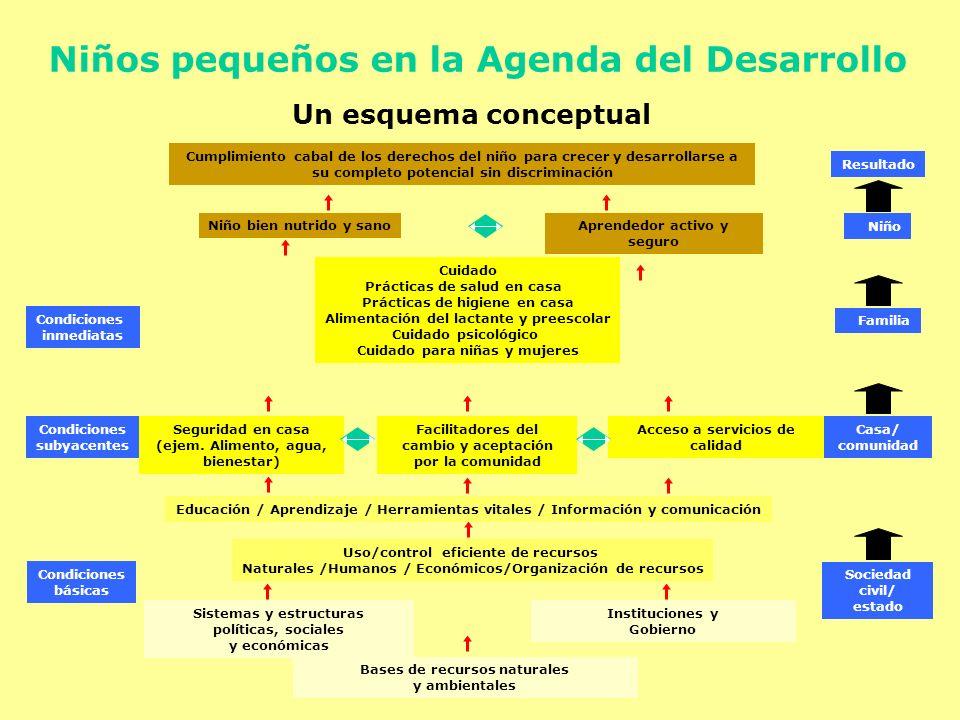 Sociedad civil/ estado Bases de recursos naturales y ambientales Uso/control eficiente de recursos Naturales /Humanos / Económicos/Organización de rec