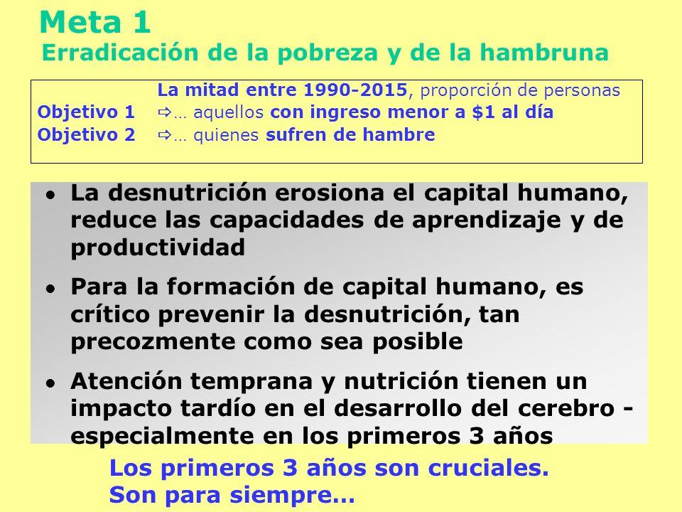 La mitad entre 1990-2015, proporción de personas Objetivo 1 … aquellos con ingreso menor a $1 al día Objetivo 2 … quienes sufren de hambre Meta 1 Erra