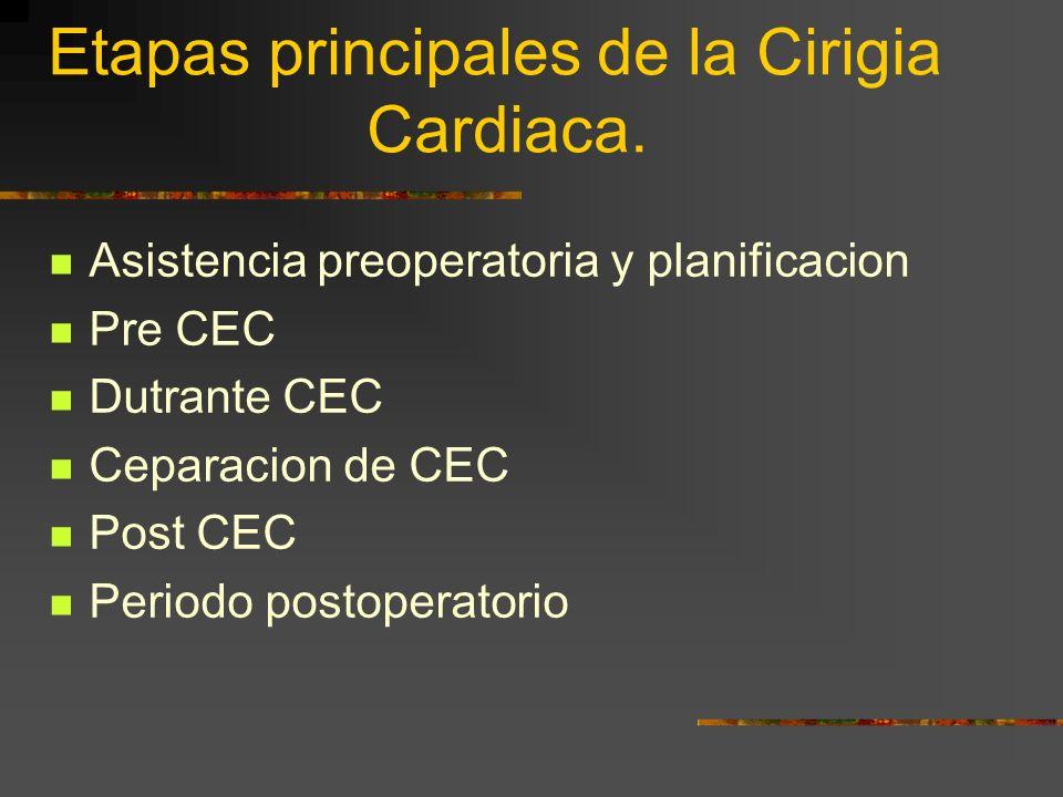 Etapas principales de la Cirigia Cardiaca. Asistencia preoperatoria y planificacion Pre CEC Dutrante CEC Ceparacion de CEC Post CEC Periodo postoperat