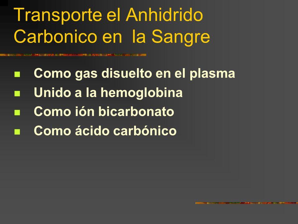 Transporte el Anhidrido Carbonico en la Sangre Como gas disuelto en el plasma Unido a la hemoglobina Como ión bicarbonato Como ácido carbónico