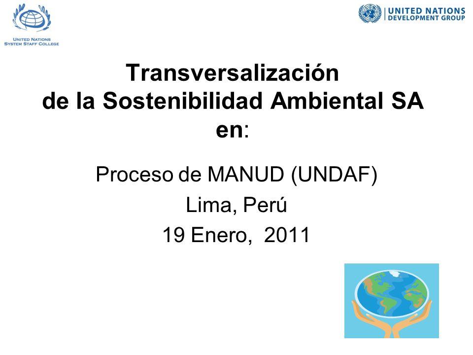 Transversalización de la Sostenibilidad Ambiental SA en: Proceso de MANUD (UNDAF) Lima, Perú 19 Enero, 2011