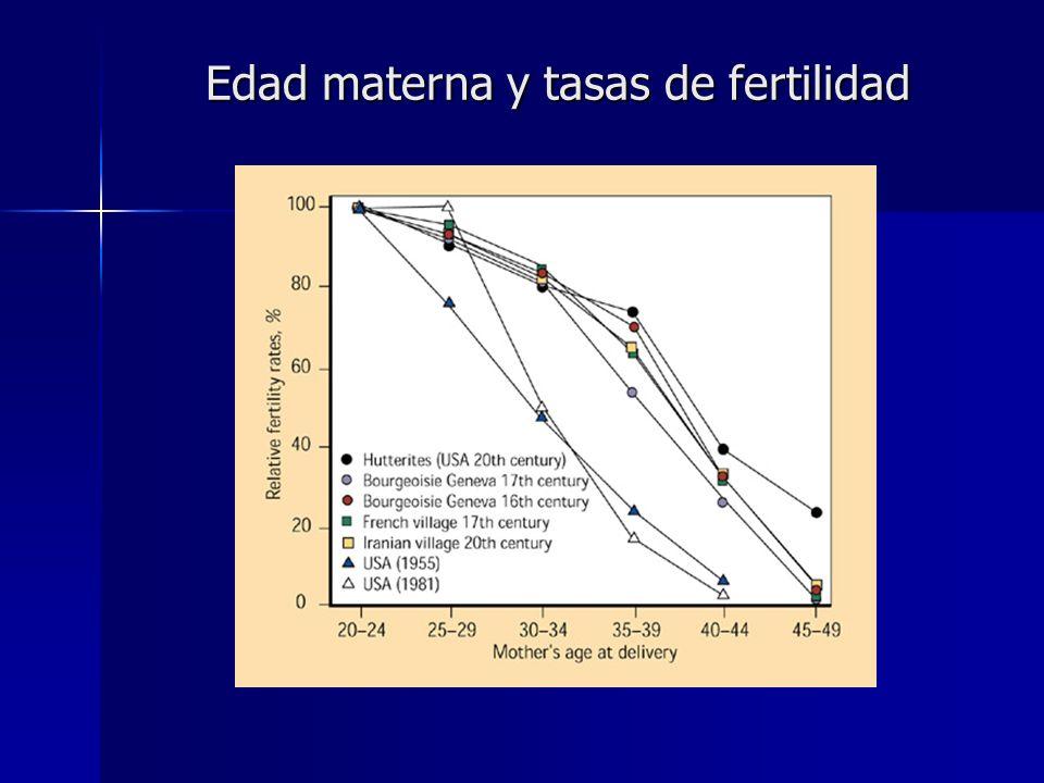 Edad materna y tasas de fertilidad Edad materna y tasas de fertilidad