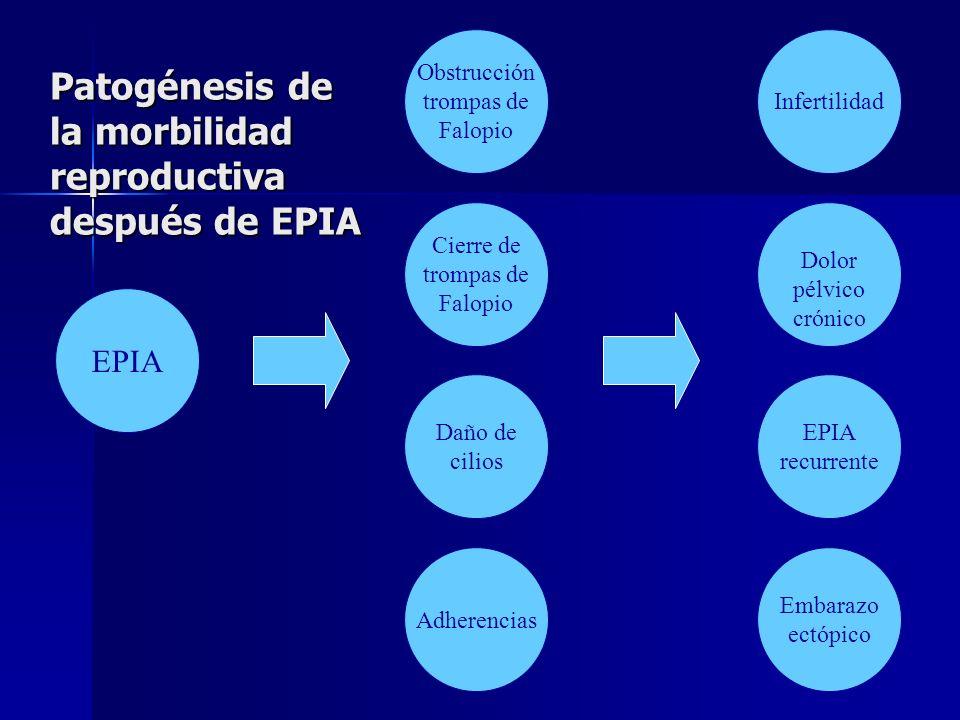 Patogénesis de la morbilidad reproductiva después de EPIA EPIA Infertilidad Dolor pélvico crónico EPIA recurrente Embarazo ectópico Obstrucción trompa