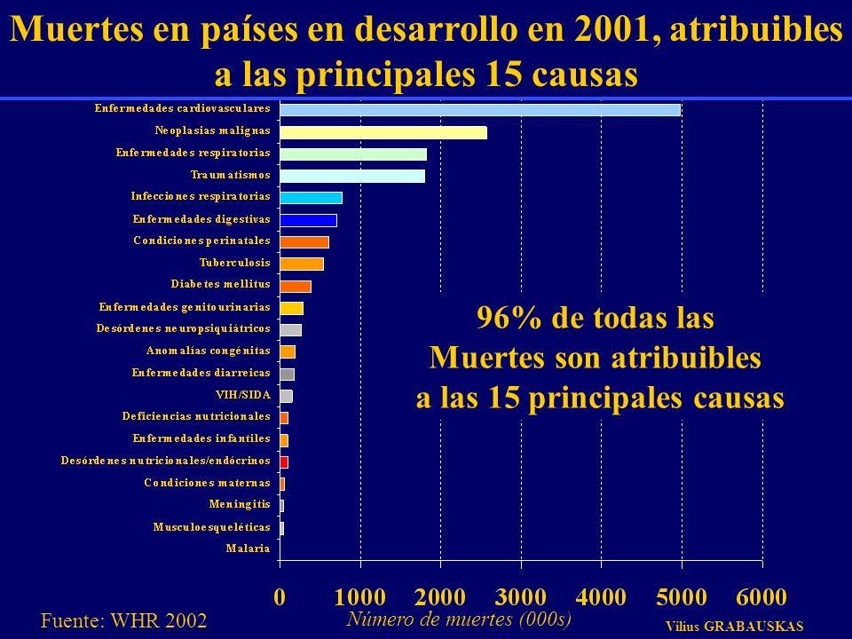 Muertes en países en desarrollo en 2001, atribuibles a las principales 15 causas Número de muertes (000s) 96% de todas las Muertes son atribuibles a l