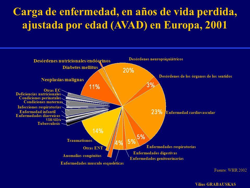 VIH/SIDA Tuberculosis Traumatismos Infecciones respiratorias Carga de enfermedad, en años de vida perdida, ajustada por edad (AVAD) en Europa, 2001 Ot