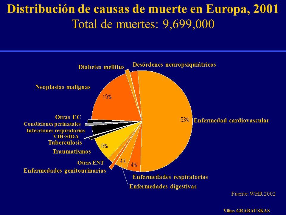 VIH/SIDA Tuberculosis Traumatismos Infecciones respiratorias Distribución de causas de muerte en Europa, 2001 Total de muertes: 9,699,000 Otras ENT En