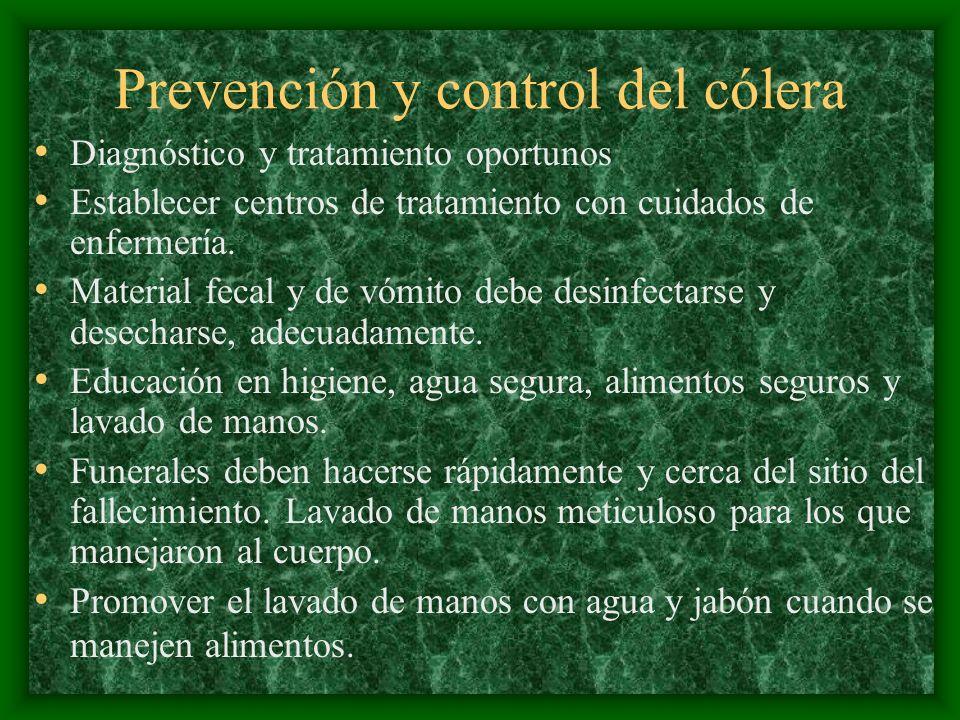 Prevención y control del cólera Diagnóstico y tratamiento oportunos Establecer centros de tratamiento con cuidados de enfermería. Material fecal y de