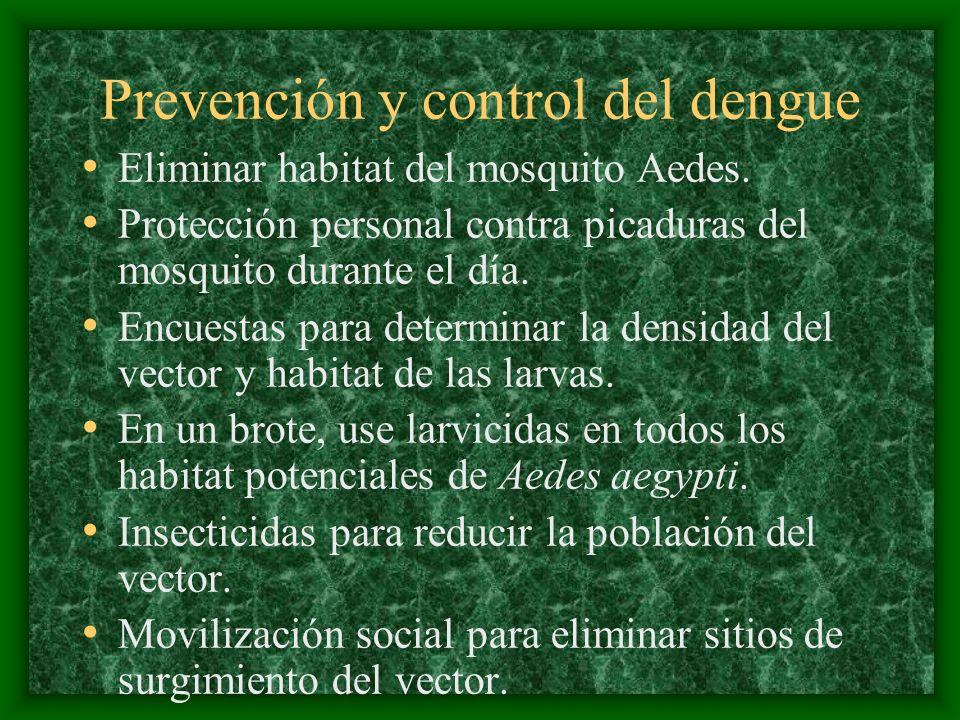 Prevención y control del dengue Eliminar habitat del mosquito Aedes. Protección personal contra picaduras del mosquito durante el día. Encuestas para