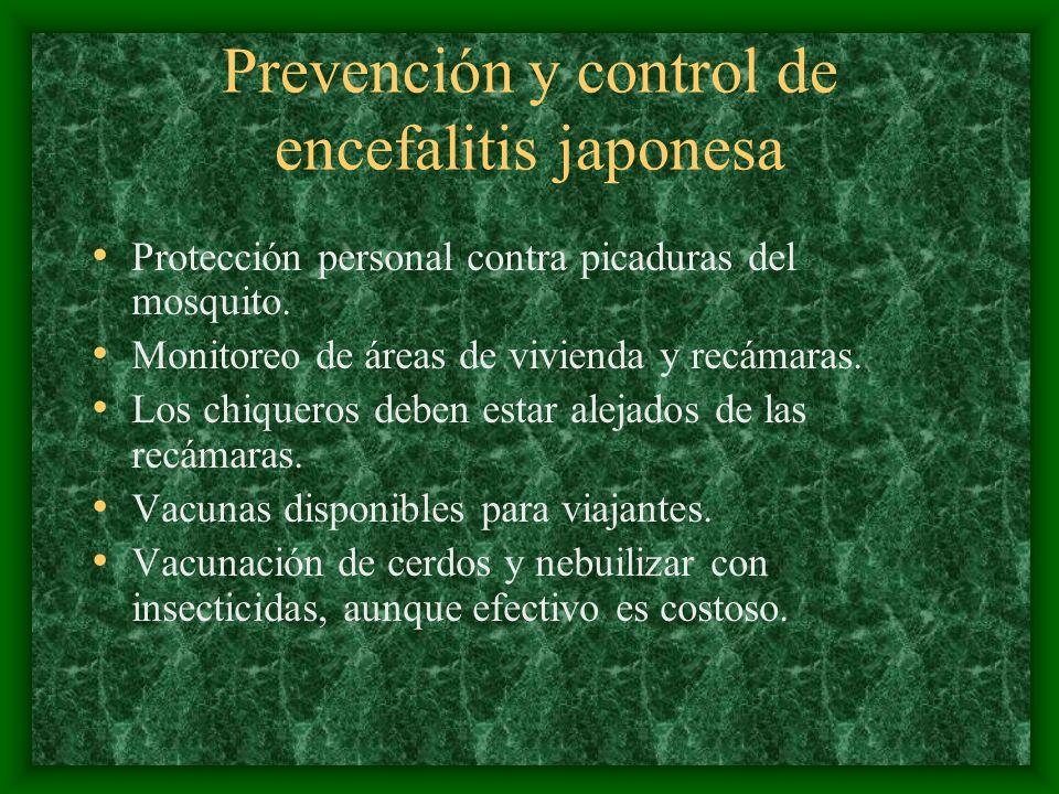 Prevención y control de encefalitis japonesa Protección personal contra picaduras del mosquito. Monitoreo de áreas de vivienda y recámaras. Los chique
