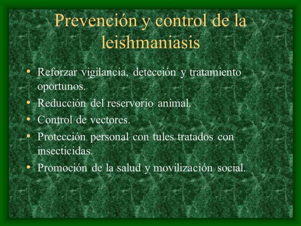 Prevención y control de la leishmaniasis Reforzar vigilancia, detección y tratamiento oportunos. Reducción del reservorio animal. Control de vectores.