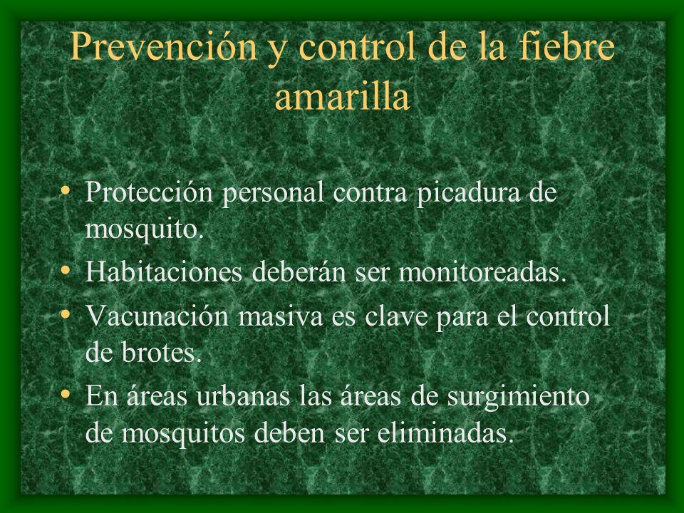 Prevención y control de la fiebre amarilla Protección personal contra picadura de mosquito. Habitaciones deberán ser monitoreadas. Vacunación masiva e