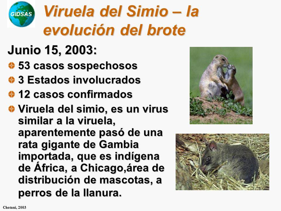 GIDSAS Chotani, 2003 Viruela del Simio – la evolución del brote Junio 15, 2003: 53 casos sospechosos 3 Estados involucrados 12 casos confirmados Virue