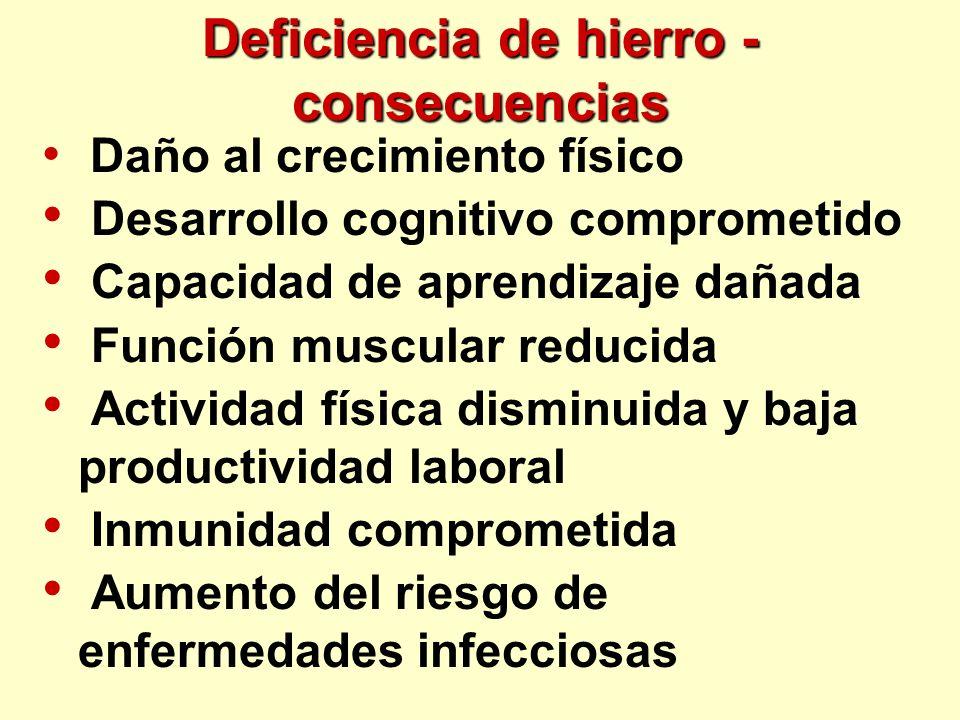 Deficiencia de hierro - consecuencias Daño al crecimiento físico Desarrollo cognitivo comprometido Capacidad de aprendizaje dañada Función muscular re