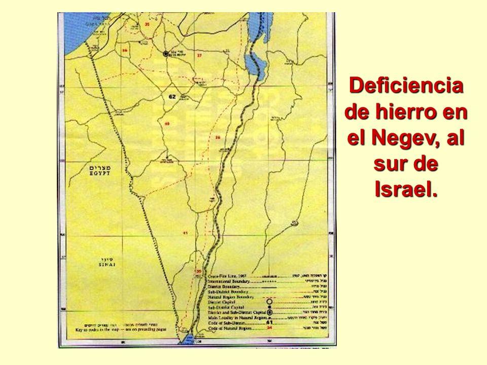 Deficiencia de hierro en el Negev, al sur de Israel.