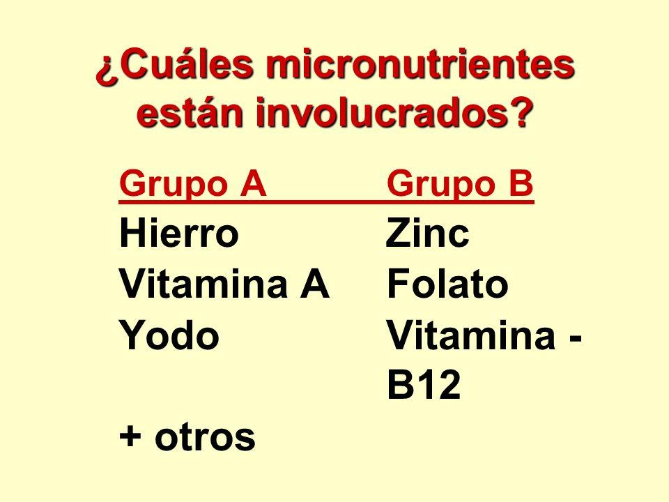 ¿Cuáles micronutrientes están involucrados? Grupo AGrupo B HierroZinc Vitamina AFolato YodoVitamina - B12 + otros