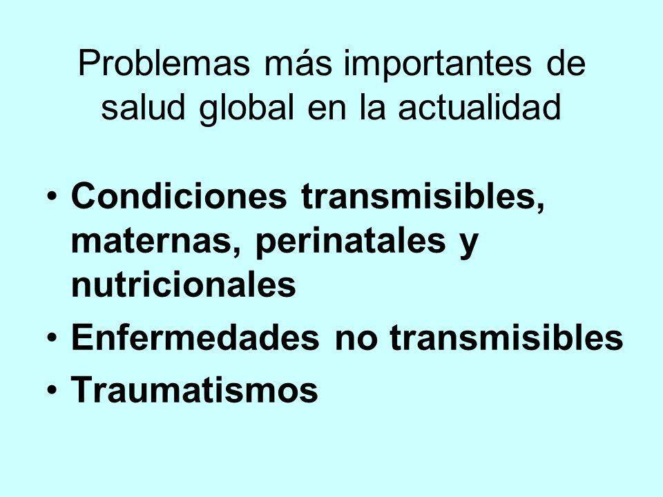 Problemas más importantes de salud global en la actualidad Condiciones transmisibles, maternas, perinatales y nutricionales Enfermedades no transmisibles Traumatismos