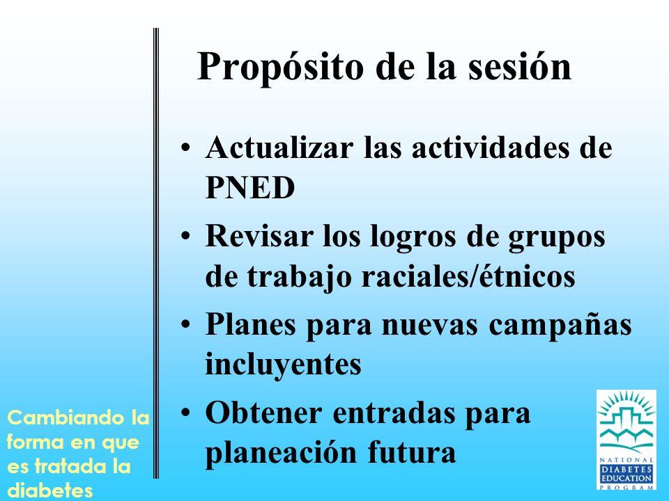 Propósito de la sesión Actualizar las actividades de PNED Revisar los logros de grupos de trabajo raciales/étnicos Planes para nuevas campañas incluye