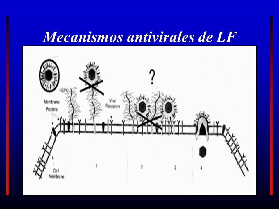 Mecanismos antivirales de LF