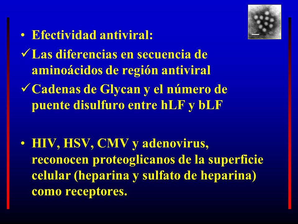 Efectividad antiviral: Las diferencias en secuencia de aminoácidos de región antiviral Cadenas de Glycan y el número de puente disulfuro entre hLF y b