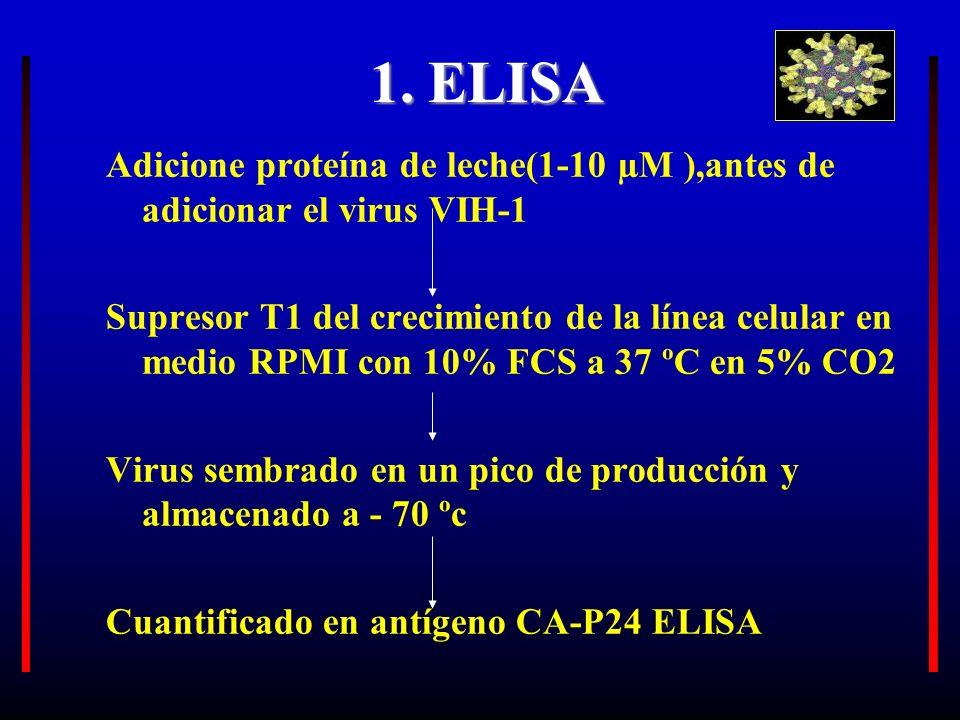 1. ELISA 1. ELISA Adicione proteína de leche(1-10 µM ),antes de adicionar el virus VIH-1 Supresor T1 del crecimiento de la línea celular en medio RPMI