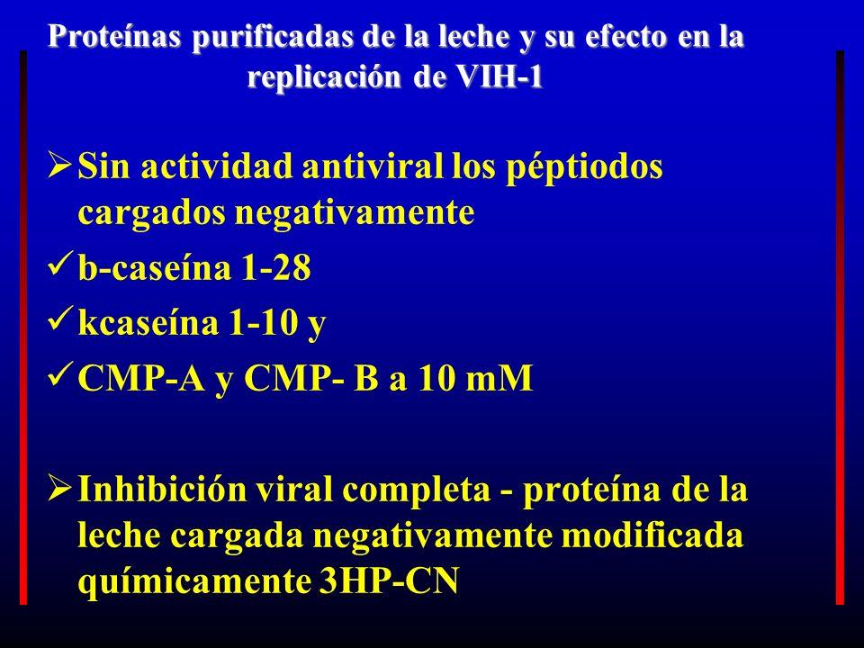 Proteínas purificadas de la leche y su efecto en la replicación de VIH-1 Sin actividad antiviral los péptiodos cargados negativamente b-caseína 1-28 k