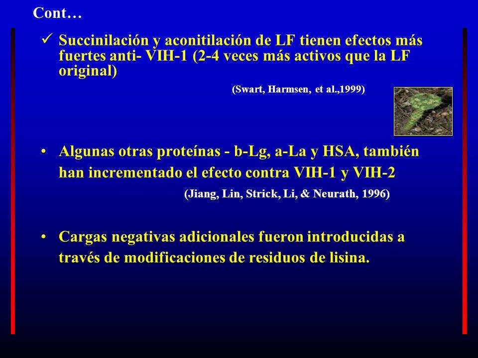 Succinilación y aconitilación de LF tienen efectos más fuertes anti- VIH-1 (2-4 veces más activos que la LF original) (Swart, Harmsen, et al.,1999) Al