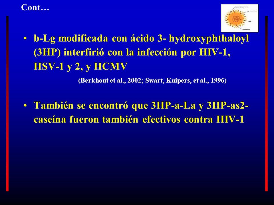 b-Lg modificada con ácido 3- hydroxyphthaloyl (3HP) interfirió con la infección por HIV-1, HSV-1 y 2, y HCMV (Berkhout et al., 2002; Swart, Kuipers, e