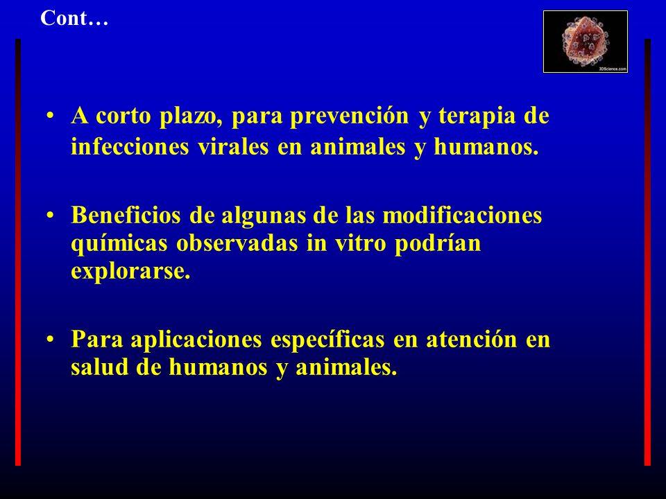 A corto plazo, para prevención y terapia de infecciones virales en animales y humanos. Beneficios de algunas de las modificaciones químicas observadas