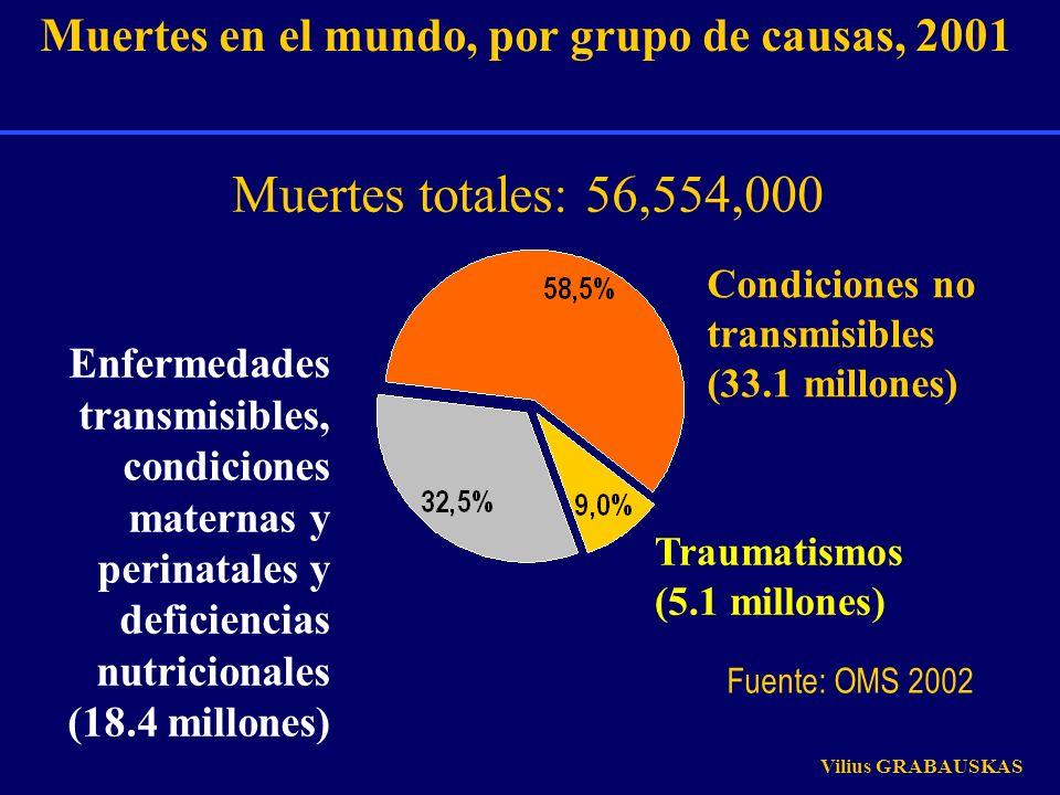 Traumatismos (5.1 millones) Condiciones no transmisibles (33.1 millones) Muertes en el mundo, por grupo de causas, 2001 Enfermedades transmisibles, co