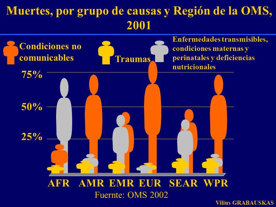 75% 50% 25% AFRAMREMREURSEARWPR Muertes, por grupo de causas y Región de la OMS, 2001 Enfermedades transmisibles, condiciones maternas y perinatales y