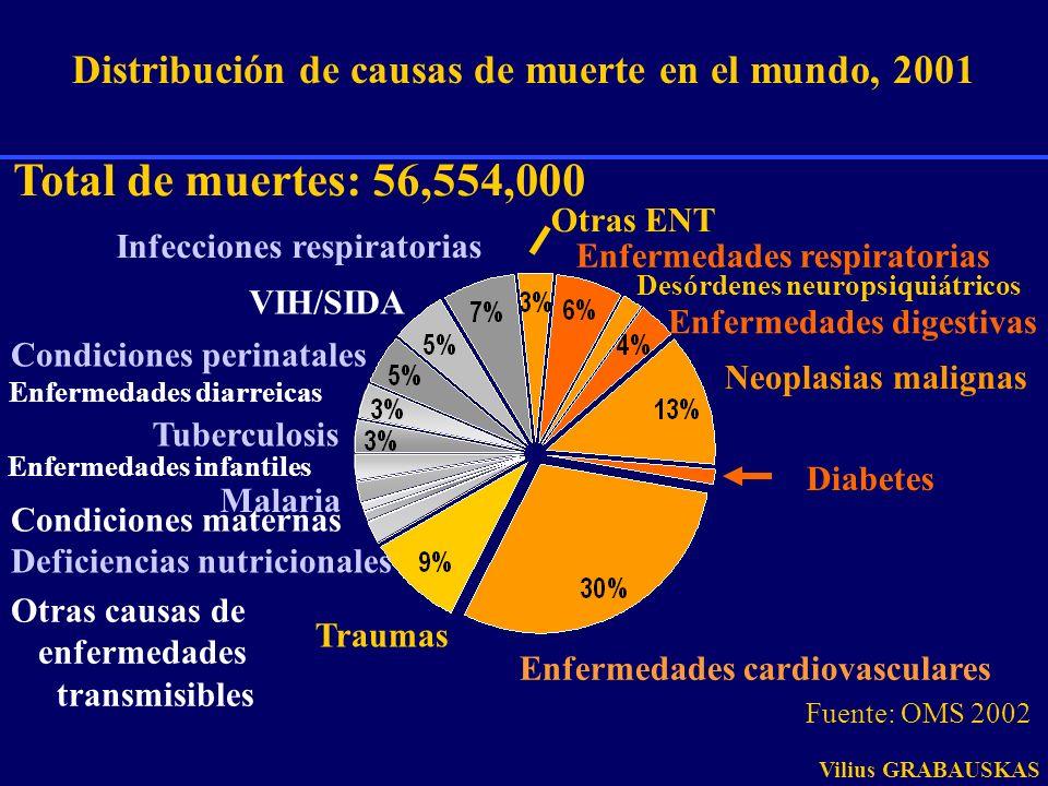 Distribución de causas de muerte en el mundo, 2001 Total de muertes: 56,554,000 Enfermedades cardiovasculares Diabetes Neoplasias malignas Enfermedade