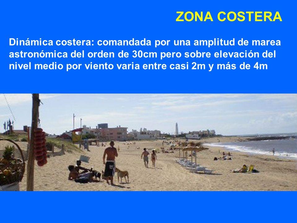 ZONA COSTERA Dinámica costera: comandada por una amplitud de marea astronómica del orden de 30cm pero sobre elevación del nivel medio por viento varia