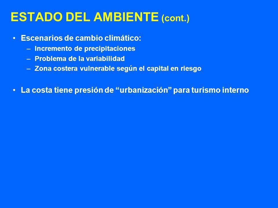 ESTADO DEL AMBIENTE (cont.) Escenarios de cambio climático: –Incremento de precipitaciones –Problema de la variabilidad –Zona costera vulnerable según