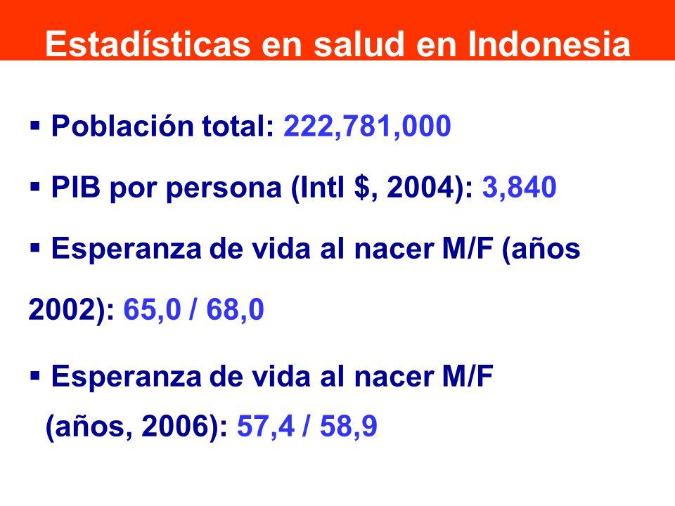 Población total: 222,781,000 PIB por persona (Intl $, 2004): 3,840 Esperanza de vida al nacer M/F (años 2002): 65,0 / 68,0 Esperanza de vida al nacer