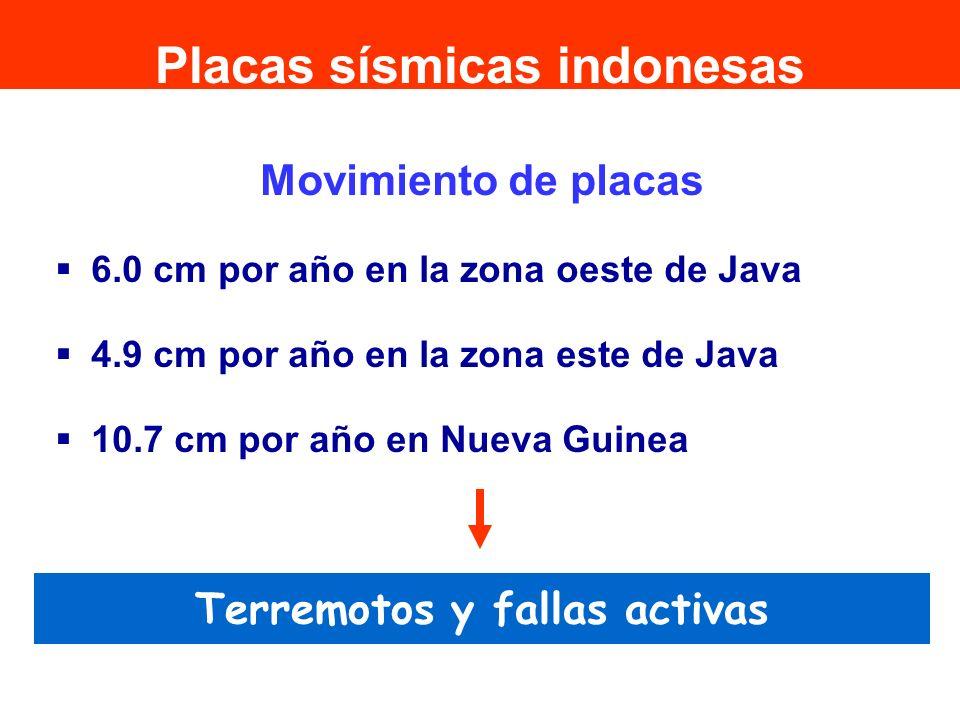 Movimiento de placas 6.0 cm por año en la zona oeste de Java 4.9 cm por año en la zona este de Java 10.7 cm por año en Nueva Guinea Terremotos y falla