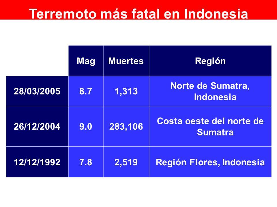 RegiónMuertesMag Norte de Sumatra, Indonesia 1,3138.728/03/2005 Costa oeste del norte de Sumatra 283,1069.026/12/2004 Región Flores, Indonesia2,5197.8